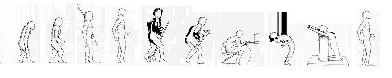 Menschheit Evolution
